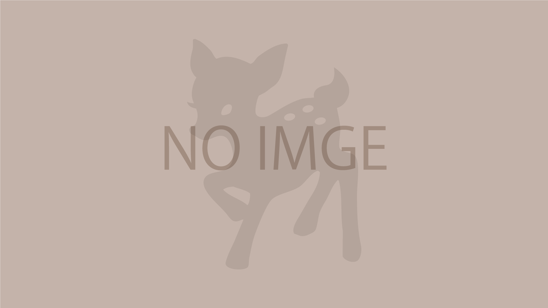 no_img